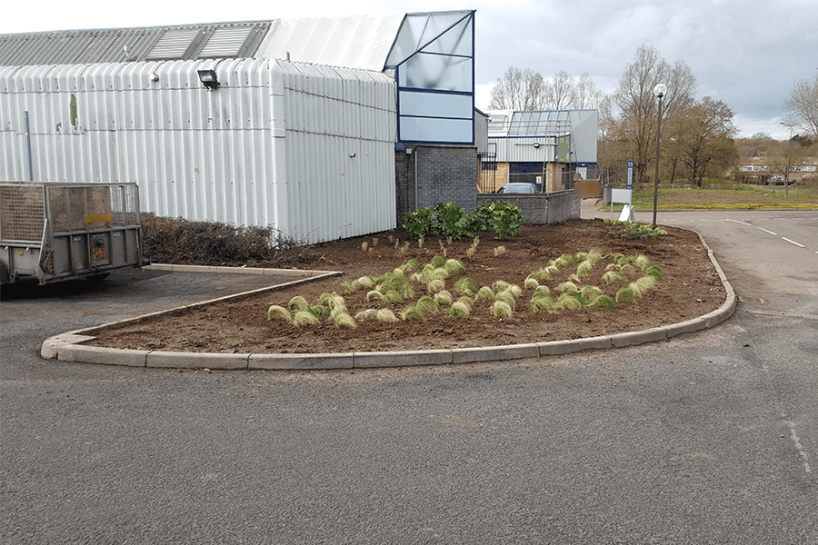 landscaping-planting-one-cs