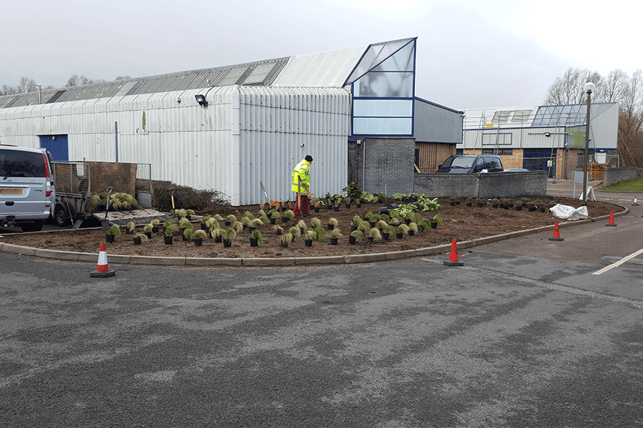 landscaping-planting-scheme-cs