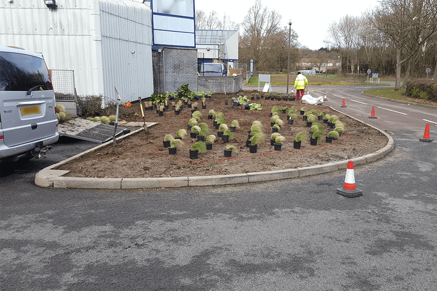 landscaping-scheme-one-cs