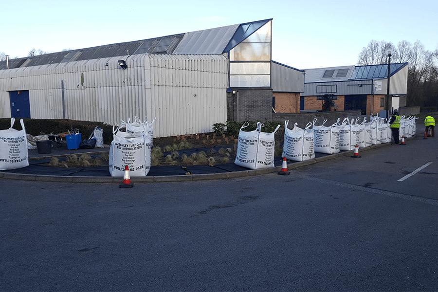 stacey-plant-scheme