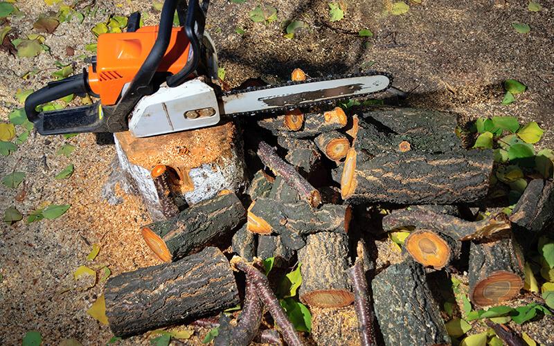 firewood and chainsaw