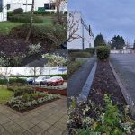 small planting scheme CMK