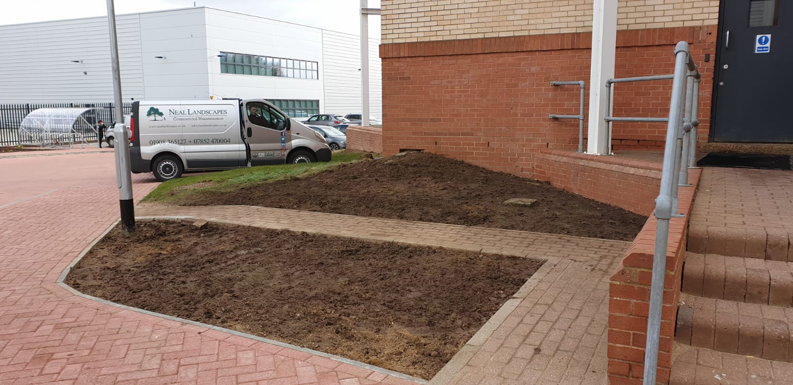 garden with grass removed
