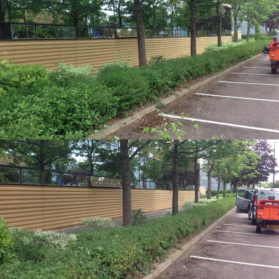 before and after car park dpd