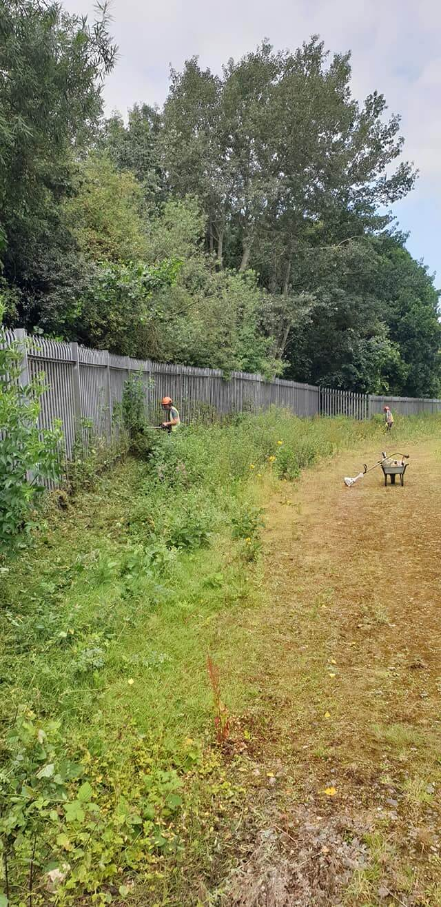 neal landscapes team carrying out work