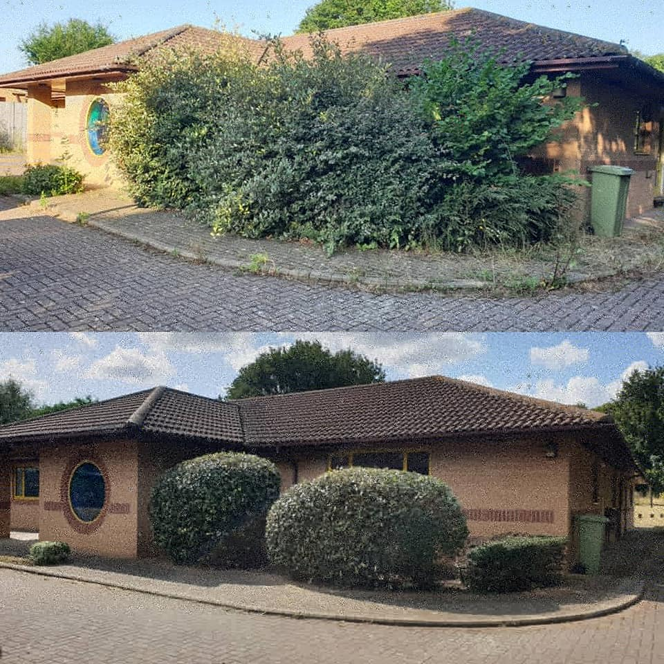 Exterior hedge tidy up before and after