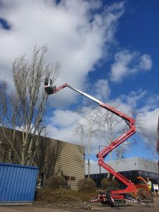 Tree Surgery Crane