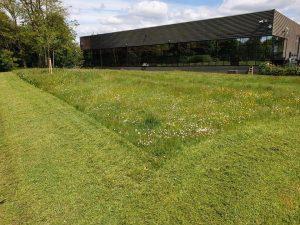 Buckinghamshire Landscaping